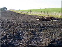 SU0017 : Resting harrow, Sixpenny Handley by Maigheach-gheal