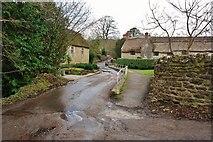 ST5707 : Melbury Osmond:  Raised Footpath and Bridge in Holt Lane by Eugene Birchall
