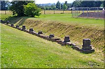 SJ5608 : Wroxeter Roman City (06) - remains of column bases of The Forum by P L Chadwick