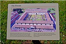 SJ5608 : Wroxeter Roman City (09) - information board about The Forum by P L Chadwick