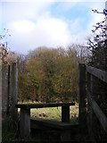 TM3763 : Footpath stile of the footpath to Brook Farm Road & Sandy Lane by Adrian Cable