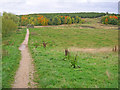 SK4761 : Path to Silverhill Wood by Trevor Rickard