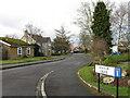 NZ4611 : Manor Drive, Hilton by Alex McGregor