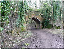 SU4726 : Footpath under the former railway line by Graham Horn