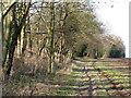 TL5553 : Farm track beside Fleam Dyke by John Sutton