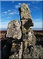 SO3698 : Stiperstones rocks, Shropshire by Dave Croker