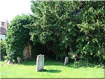 TG1022 : Hackford All Saints ruined church by Adrian S Pye
