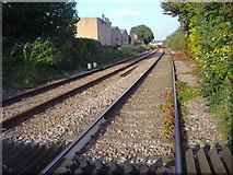TQ1979 : Railway line northbound from Bollo Lane by David Howard