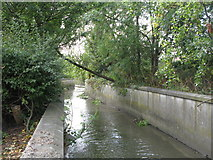 TQ3772 : The River Ravensbourne west of Bromley Road Retail Park, SE6 (2) by Mike Quinn