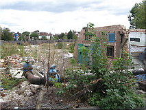TQ3772 : Derelict site between Bromley Road and Franthorne Way, SE6 by Mike Quinn