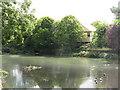 TQ3968 : Lake by Glassmill Lane, BR2 (4) by Mike Quinn