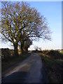 TM3466 : Bruisyard Road by Geographer
