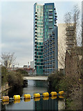 TQ3783 : Bow Back River (St Thomas's Creek) by Robin Webster