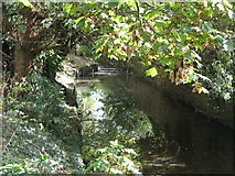 TQ3870 : The River Ravensbourne east of Ravensmead Road, BR2 (2) by Mike Quinn