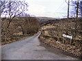 SD9806 : Knarr Lane by David Dixon