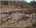 NT6380 : Rocky shore by Links Wood by Eileen Henderson