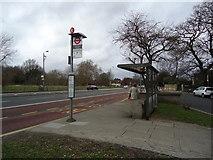 TQ2374 : Bus stop, Putney Heath by Stacey Harris