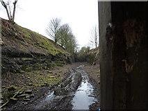 SK1971 : Monsal Trail; a barrier to progress by Peter Barr