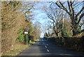 TQ6335 : Entering Little Bayham, B2169 by N Chadwick