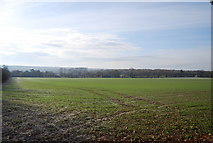 TQ8554 : View from the North Downs Way by N Chadwick