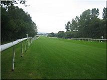 TQ3942 : Lingfield Park Racecourse by Tom Walsingham