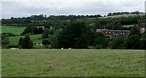 SO9969 : Farmland near Tardebigge, Worcestershire by Roger  Kidd