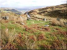 SH6600 : Eglwys y Gwyddelod by Richard Law