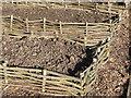 SJ5410 : Raised Beds, Attingham Walled Garden by Richard Greenwood
