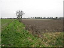 TR2856 : Footpath junction near Barnsole by David Anstiss