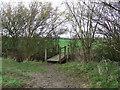 TM0149 : Footbridge by Keith Evans