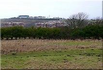 TQ3305 : Brighton Racecourse. by Nigel Mykura
