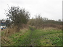 TR3256 : Footpath and bridleway junction beside the A256 Ramsgate road by David Anstiss