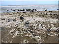 TG2640 : Chalk raft exposed at low tide, Sidestrand by Evelyn Simak