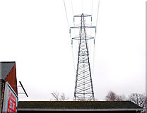 J3673 : Pylon and power lines, east Belfast (10) by Albert Bridge
