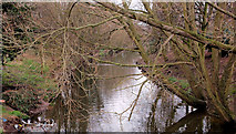 J3673 : The Knock River, Belfast (10) by Albert Bridge