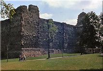 TL9925 : Colchester Castle by David Dixon