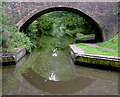 SP0274 : Through bridge No 66 south-west of Hopwood, Worcestershire by Roger  Kidd