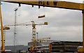 "J3575 : ""Goliath"" lifting, Belfast (1) by Albert Bridge"