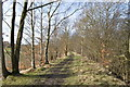 SK4863 : Rowthorne Trail by Ashley Dace