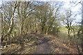 SK4763 : Rowthorne Trail by Ashley Dace