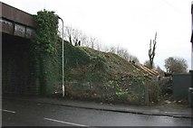 ST1477 : Tree felling on the Cardiff to Radyr railway line by Adrian Platt