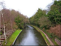SO8275 : Staffordshire & Worcestershire Canal, near The Watermill, Kidderminster by P L Chadwick
