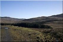 NR3858 : Forestry near Kynagarry by Becky Williamson