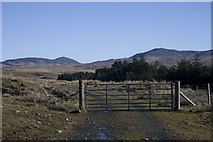 NR3858 : Gate at the edge of the Forestry near Kynagarry, Islay by Becky Williamson
