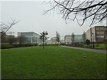 SU4212 : Southampton's splendid parks (27) by Basher Eyre