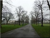 SU4212 : Southampton's splendid parks (38) by Basher Eyre