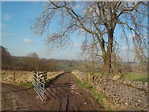 SK1272 : Track and Public Footpath near Blackwell Hall by Jonathan Clitheroe