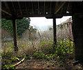 TG1403 : Planet Farm, Hethersett - the farmyard by Evelyn Simak