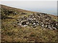 S7943 : Blackstairs Ruin by kevin higgins
