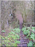 TM3763 : Footpath steps on the footpath to Thurlow Close by Adrian Cable